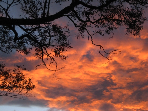 spring-sunset-canberra-australia-sonya-heaney-10th-september-2016-sky-clouds-nature