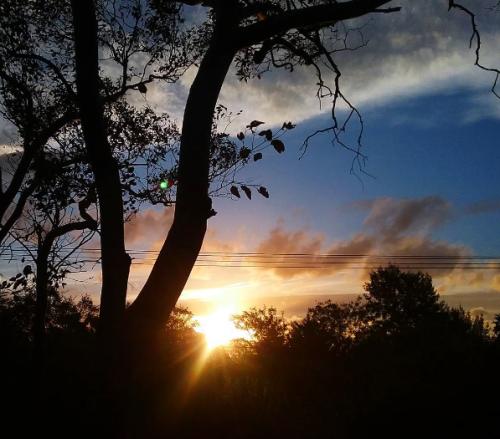 wednesday-evening-canberra-australia-sunset-sky-clouds-garden-spring-nature-sonya-heaney-5th-october-2016