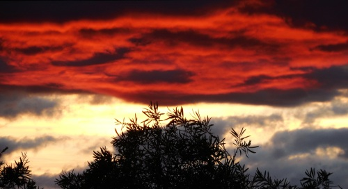 canberra-australia-spring-sunset-november-2016-sonya-oksana-heaney-sky-clouds-nature-copy