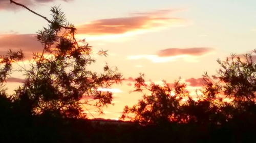 sunset-end-of-spring-canberra-australia-sonya-heaney-29th-november-2016