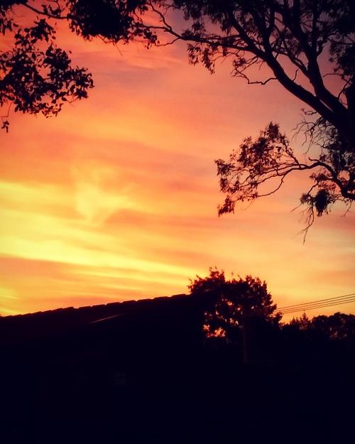 canberra-summer-sunset-australia-sonya-heaney-sky-couds-nature-december-2016