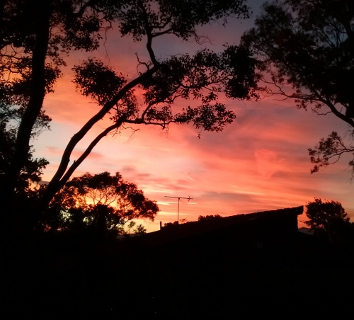 friday-evening-sunset-canberra-australia-sonya-heaney-summer-sky-clouds-nature-2nd-december-2016