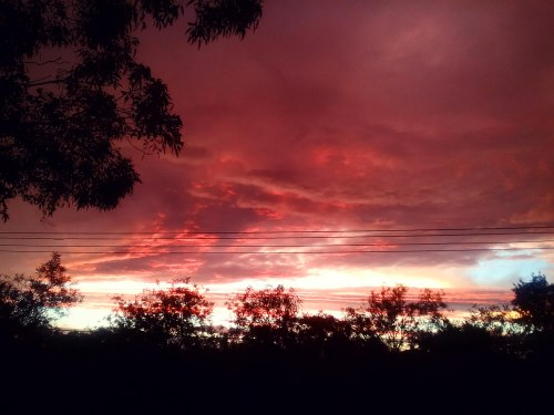 post-rain-sunset-canberra-australia-sonya-heaney-30th-december-2016-sky-clouds-nature-summer