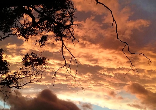 thursday-summer-sunset-canberra-australia-sonya-heaney-8th-december-2016-sky-clouds-nature