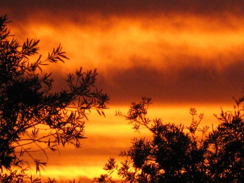 canberra-summer-sunset-new-years-day-sonya-heaney-1st-january-2017-sky-clouds-australia-nature
