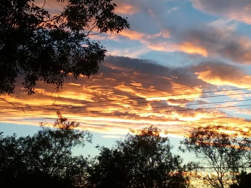 saturday-sunset-canberra-australia-sonya-heaney-summer-sky-clouds-nature-4th-february-2017
