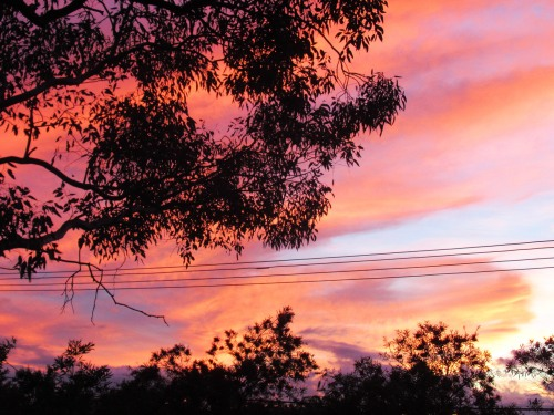 Canberra Australia Spring Sunset #2 Sonya Heaney Tuggeranong 19th November 2017 Sky Clouds Nature