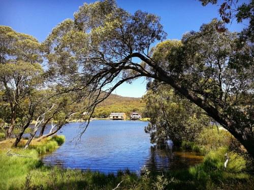 2017 Lake Crackenback Resort Snowy Mountains Kosciuszko National Park New South Wales Australia Sonya Heaney Oksana Heaney Nature 30th December 2017 1