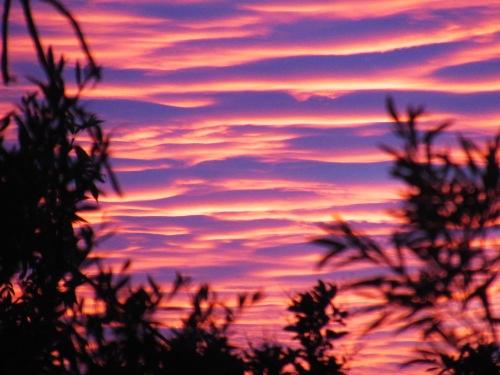 Canberra Australia Summer Sunset Sonya Heaney 10th January 2018 Sky Clouds Tuggeranong Nature