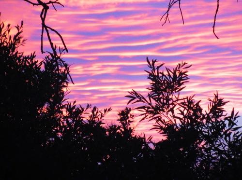 Canberra Australia Summer Sunset Sonya Heaney 10th January 2018 Sky Clouds Tuggeranong Nature.