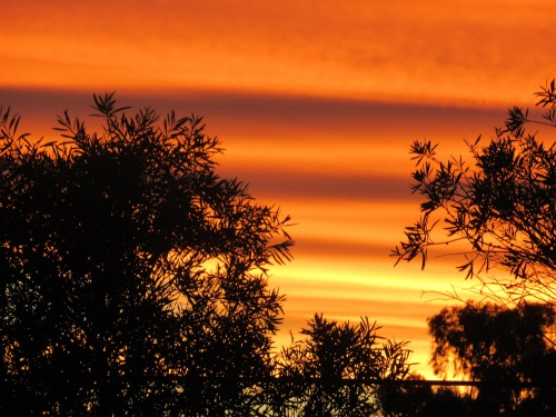 IMG_5664 Canberra Australia Summer Sunset Sonya Heaney 12th February 2018 Australian Capital Territory Tuggeranong Sky Clouds Nature