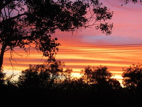 IMG_5673 Canberra Australia Summer Sunset Sonya Heaney 12th February 2018 Australian Capital Territory Tuggeranong Sky Clouds Nature