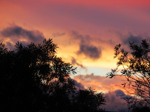Canberra Australian Capital Territory Australia Sunset Sonya Heaney Autumn Sky Clouds Nature 25th March 2018