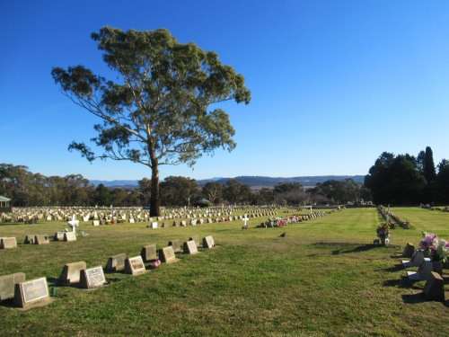 Winter Queanbeyan Lawn Cemetery near Canberra New South Wales Australia 22nd June 2018 SOnya Heaney Blue Sky Nature