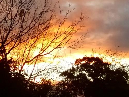 Winter Sky Sunset 2 Canberra Australia Sonya Heaney 28th June 2018 Nature