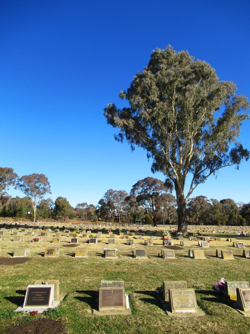 Queanbeyan Lawn Cemetery near Canberra Australia Sonya Heaney Winter Blue Sky 13th July 2018