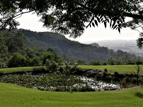 llawarra New South Wales Australia Oksana Heaney December 2018 Escarpment House South Coast Mountains Valley Pond.jpg