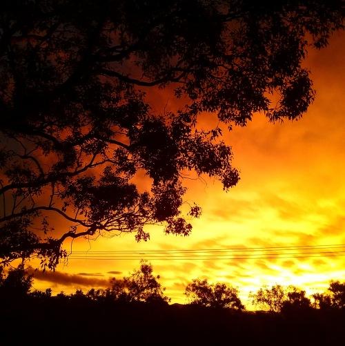 Canberra Australia Summer Sunset Sonya Heaney 8th February 2019 Sky Nature