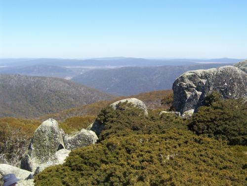 Mount_Ginini_-_Namadgi_National_Park_-_2 ACT NSW Canberra Region Australia October 2006