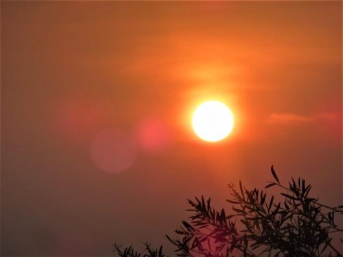Bushfire Sunset Canberra Australia Sonya Heaney 9th December 2019
