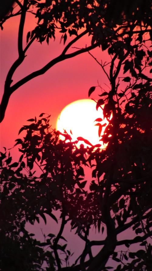 Canberra Australia Summer Heatwave Sunset Sonya Oksana Heaney Smoke Bushfire 30th December 2019 1