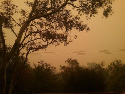 Canberra Australia Bushfire Smoke 5th January 2019 Sonya Heaney Nature Natural Disaster 2