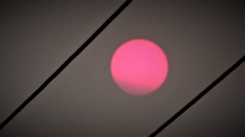 Canberra Australia Bushfire Sunset Smoky Sky Evening Sonya Heaney 13th January 2020 2