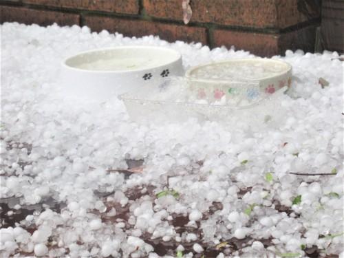 Hailstorm southern Canberra Australia Sonya Heaney 16th January 2020.