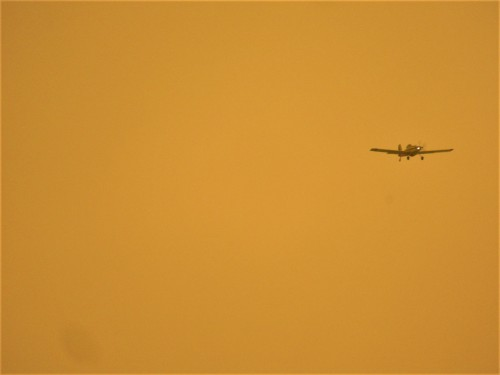 Water Bombing Aeroplane Surveillance Namadgi Bushfire Smoke Tuggeranong Canberra Australia Sonya Oksana Heaney 29th January 2020