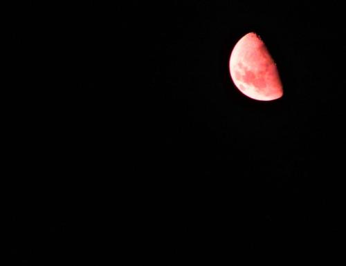 Canberra Australia Bushfire Moon Sonya Heaney 3rd February 2020
