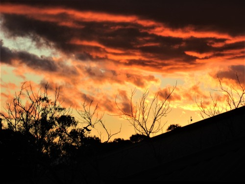 Autumn Sunset Canberra Australia Sonya Heaney 18th May 2020 Sky Nature 1