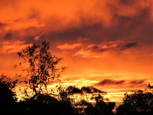 Autumn Sunset Canberra Australia Sonya Heaney 22nd May 2020 Sky Clouds Sun Nature
