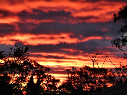 Winter Sunset Canberra Australia Sonya Heaney 16th July 2020 Sky Clouds Nature